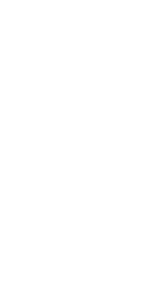 Ahornblatt halb weiß